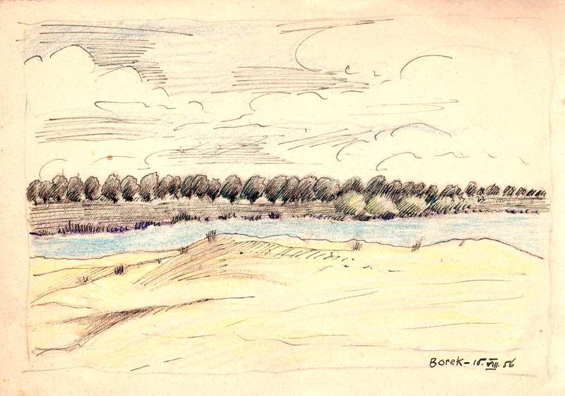 ©Maurycy Bodalski - Borek 15 08 1956.