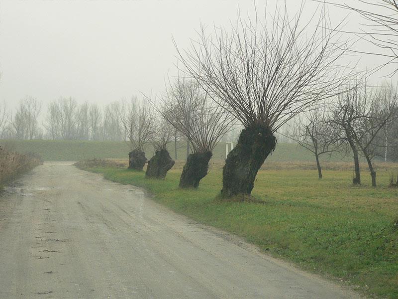 Urzecze - paysage typique.